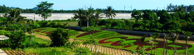 海南南洋芦荟生物工程(美国)有限公司